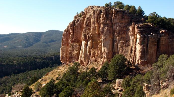 Cactus cliff 2
